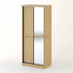 Шкаф купе Версаль 2 с зеркалом