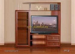 Стойка ТВ 3 Стезар
