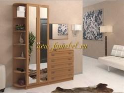 Мебель для прихожей Горизонт 9М