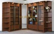 Библиотека купе Люси 2